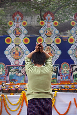 Bhutanese pilgrim praying at butter statues that is made under the bodhi tree inside mahabodhi temple complex. Kalachakra initiation in bodhgaya, india