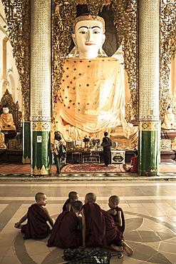 Novice monks who have just performed Shin Pyu at Shewdagon Paya, Yangon (Rangoon), Myanmar (Burma), Asia