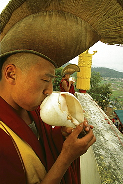 Bonpo conch shell, t. Norbutse. young monks, wearing ceremonial hats, blow on conch shells to call monks to prayer. yellow cylindrical object behind them is a victory banner, symbolizing monasteries defeat of negativity evil intention on premises
