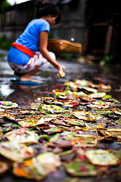 A lady gives her daily offering in Bali, Indonesia, Southeast Asia, Asia