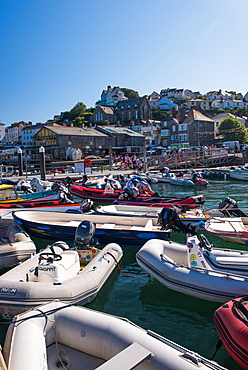 Marine Quay, Salcombe, Devon, England, United Kingdom, Europe