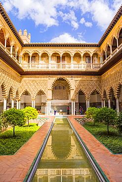 Real Alcazar, UNESCO World Heritage Site, Santa Cruz district, Seville, Andalusia (Andalucia), Spain, Europe