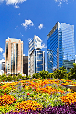 Discovery Green, Houston, Texas, United States of America, North America,