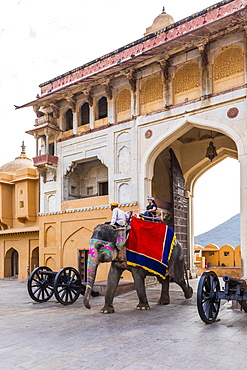 Elephants walking through the entrance gate at Amer (Amber) Palace and Fort, UNESCO World Heritage Site, Amer, Jaipur, Rajasthan, India, Asia