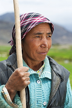 A Ladakhi farmer from the Nubra Valley in the northern most part of India, Ladakh, India, Asia