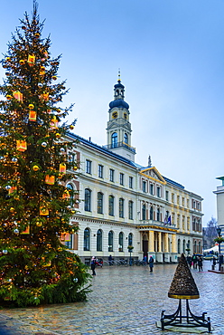 Christmas tree in Town Hall Square, UNESCO World Heritage Site, Riga, Latvia, Europe