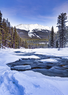 The Sunwapta River which is a tributary of the Athabasca River in jasper National Park, Alberta, Canada, North America