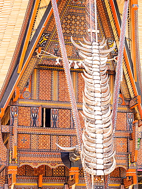 Traditional painted housefront with water buffalo horns, Tana Toraja, Sulawesi, Indonesia, Southeast Asia, Asia