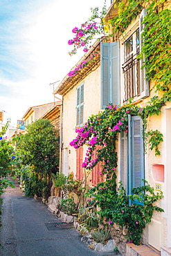 Picturesque small alleyway in Antibes, Cote d'Azur, Provence, France, Europe