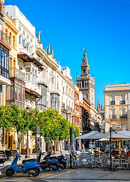Traditional Andalusian architecture with Gothic-Moorish belltower of Seville Cathedral in background, Seville, Andalusia, Spain, Europe