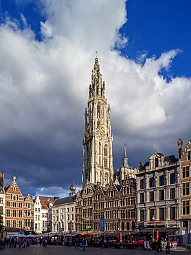 Houses on Grote Markt and Cathedral Tower, Antwerp, Belgium, Europe