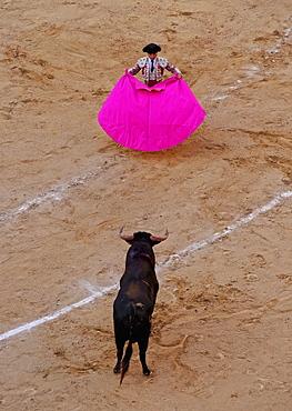 Bullfighting, Novillada Picada on the Bullring, Plaza de Toros de Las Ventas, Madrid, Spain, Europe