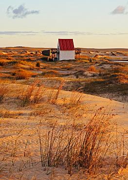 Sunrise at dunes, Cabo Polonio, Rocha Department, Uruguay, South America