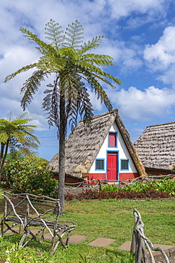 Traditional house under a palm tree, Santana, Madeira region, Portugal, Europe