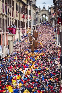 Ceri Festival, Race of Ceri in the town, Gubbio, Umbria, Italy, Europe