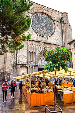 Market stalls in front of the Gothic church of Santa Maria del Mar, La Ribera, Barcelona, Catalonia, Spain, Europe