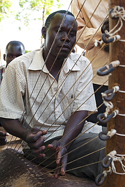 A man playing the chordophone, a musical instrument from the harp family, Uganda, Africa