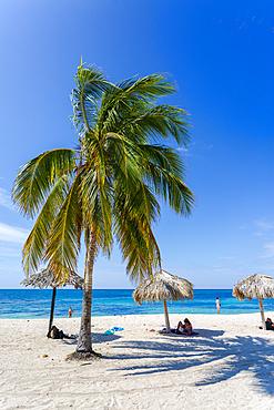 Palm trees and umbrellas on the beach Playa Ancon near Trinidad, Trinidad, Cuba, West Indies, Caribbean, Central America