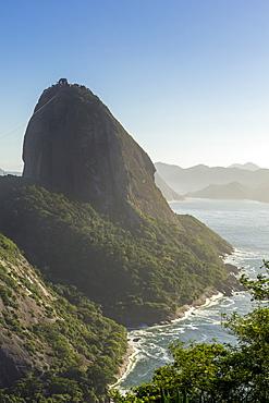 The Sugarloaf Mountain seen from Babilonia Hill (Morro da Babilonia), Rio de Janeiro, Brazil, South America