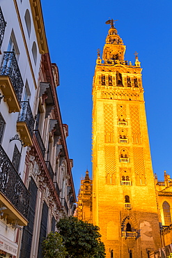 The Giralda Bell Tower at dusk, UNESCO World Heritage Site, Seville, Andalusia, Spain, Europe