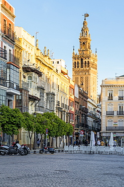 The Giralda Bell tower seen from San Francisco Square at sunset, Seville, Andalusia, Spain, Europe