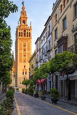 The Giralda Bell tower at first sunlight, UNESCO World Heritage Site, Seville, Andalusia, Spain, Europe