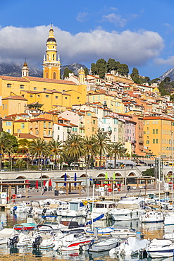 View from Vieux-Port to the old town and the Saint-Michel-Archange Basilica, Menton, Alpes Maritimes, Cote d'Azur, French Riviera, Provence, France, Mediterranean, Europe
