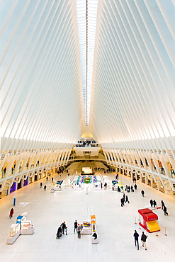 Oculus, World Trade Center Transportation Hub, Financial District, Manhattan, New York City, New York, United States of America, North America