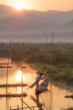 Fisherman rows with one leg at dawn in the floating gardens on Inle Lake, Shan State, Myanmar (Burma), Asia