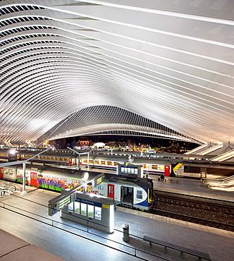 Liege-Guillemins railway station, Liege, Belgium, Europe