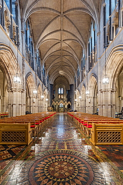 The main nave, The Christ Church, Dublin, Republic of Ireland, Europe