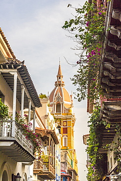 A view of the Cathedral of Cartagena (Metropolitan Cathedral Basilica of Saint Catherine of Alexandria), UNESCO World Heritage Site, Cartagena, Colombia, South America