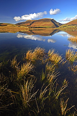 Lonscale Fell and Skiddaw reflected in the still water of Tewet Tarn, Lake District National Park, UNESCO World Heritage Site, Cumbria, England, United Kingdom, Europe