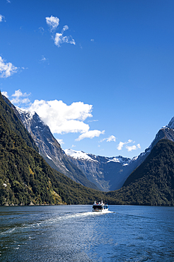 Tourist cruise ship at Milford Sound, Fiordland National Park, UNESCO World Heritage Site, South Island, New Zealand, Pacific