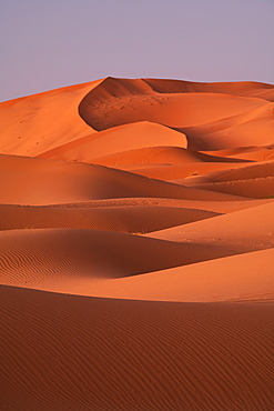Sand dunes, Sahara Desert, Morocco, North Africa, Africa