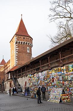 Florianska Street art gallery, Krakow, Poland, Europe