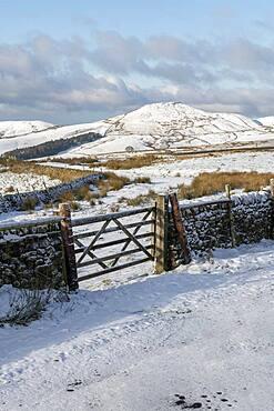Winter scene with view of Shutlingsloe, Wildboarclough, Cheshire, England, United Kingdom, Europe