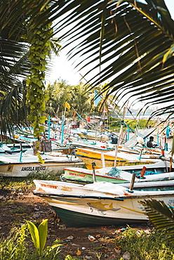 The fishing boats at Galle, Sri Lanka, Asia