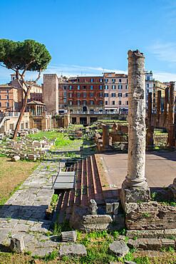 Largo di Torre Argentina, Rome, Lazio, Italy, Europe