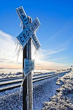 2006 Nebraska Ice Storm