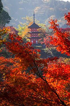 Pagoda, in Kiyomizu-dera temple, Kyoto. Kansai, Japan.