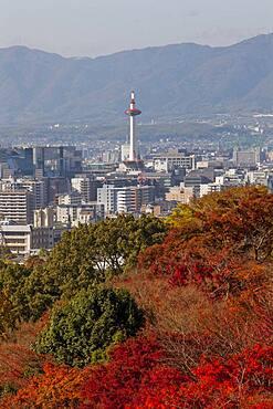 Kyoto. Kansai, Japan.