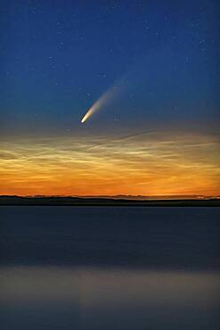 This is Comet NEOWISE (C/2020 F3) over Deadhorse Lake near Hussar in southern Alberta, taken just after midnight on July 10-11, 2020 during its evening appearance. The comet shines just above low noctilucent clouds. The slight wind ruffled the waters enough to prevent the clean reflection I was after.