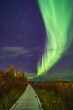 A aurora group is taking their aurora selfie shots on the boardwalk at Rotary Park in Yellowknife, NWT, under a grand sweep of an auroral arc. This was September 11, 2018 under a mild display of Lights. Illumination is from the aurora and from urban lighting nearby.