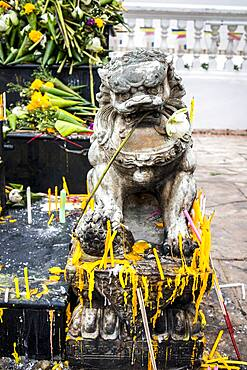 Offerings, in Wat Suan Dok, Chiang Mai, Thailand