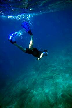 Snorkeling in Sea of Cortez, Baja California, Mexico