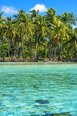 Tropical paradise seascape Taha'a island landscape, French Polynesia. Motu Mahana palm trees at the beach, Taha'a, Society Islands, French Polynesia, South Pacific.