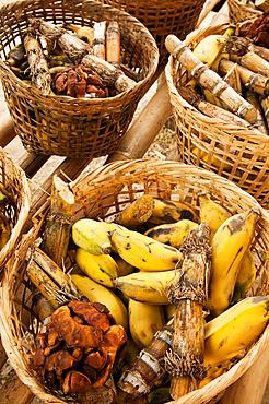 Baskets of food for elephants - bananas, sugar cane and tamarind - at Patara Elephant Farm; Chiang Mai province, Thailand.