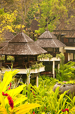 Four Seasons Resort guest rooms and gardens in Chiang Mai, Thailand.