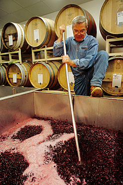 Winemaker Myles Anderson punching down a tank of merlot; Walla Walla Vintners, Washington.